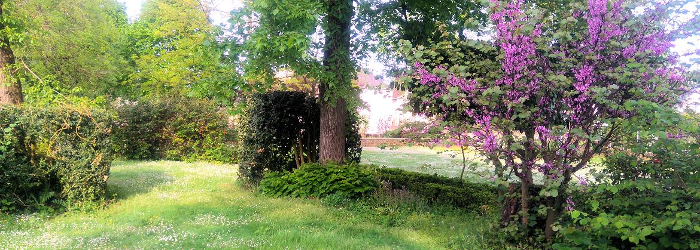 parc-vion